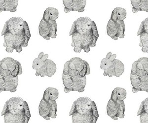 bunny, pattern, and rabbit image