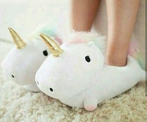 slippers image