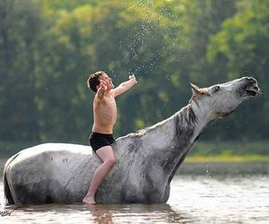 horse and boy image