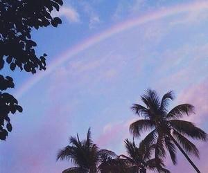 rainbow, palm trees, and alternative image