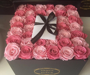 luxury, fashion, and flowers image