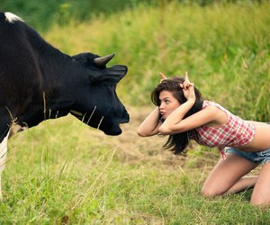 girl, cow, and funny image