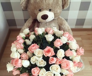 flowers, bear, and roses image