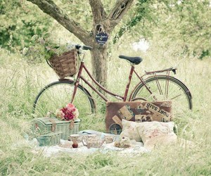 nature, vintage bicycle, and picnic image