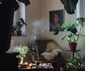 furniture, interior, and plants image