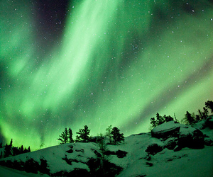 northern lights, sky, and aurora borealis image