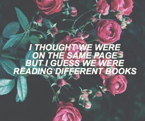 quote, roses, and love image