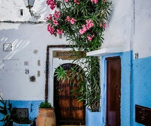 morocco and flowers image