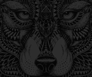 wallpaper, black, and wolf image