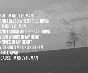 human, lyrics+, and christina+perri image