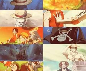 one piece, anime, and fight together image