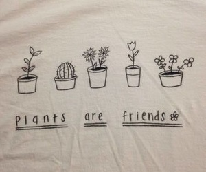 plants, tumblr, and grunge image