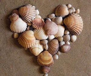 heart, shell, and beach image