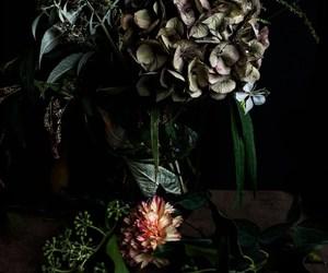carnation, decor, and flower image