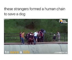 faith in humanity and god bless them all image