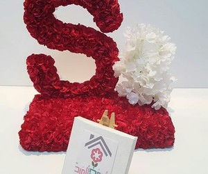 letters, حروف, and roses image