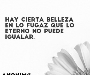 belleza, eterno, and frases image