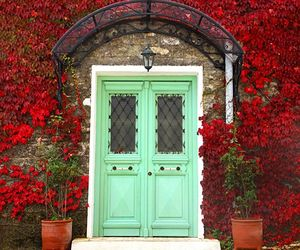 door, red, and flowers image
