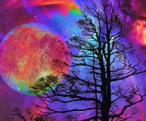 moon, tree, and colors image