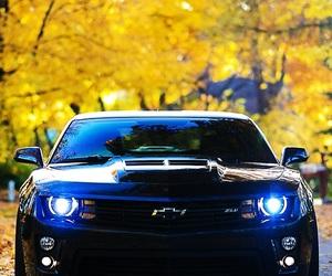 car, camaro, and luxury image