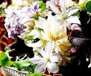 flowers and цветы image
