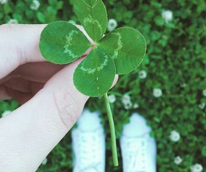clover, green, and life image