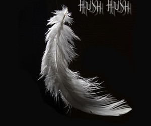 blanco y negro, wallpaper, and hush hush image