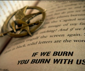 book, quote, and hunger games image