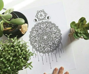 art, flower, and mandala image