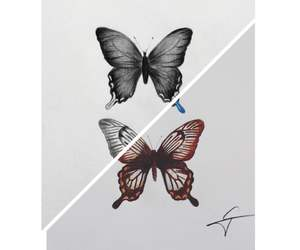 butterfly, animals, and art image