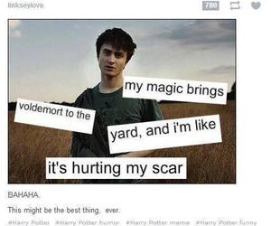 funny, harry potter, and hogwarts image