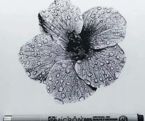 art, flowers, and black and white image