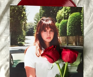 rose, lana del rey, and red image