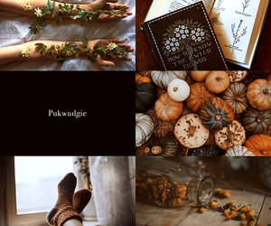 aesthetic, pukwudgie, and heal image