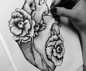 drawing, roses, and heart image