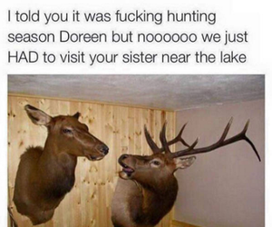 funny, lol, and deer image