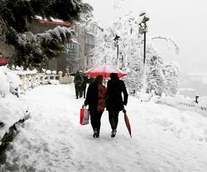 snow, winter, and shimla image