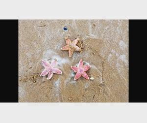 art, starfish, and beach image