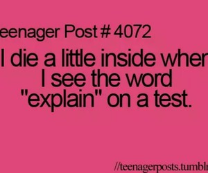funny, test, and teenager post image
