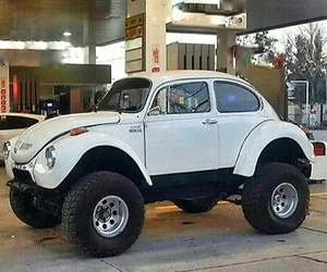 beetle, old car, and white image