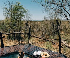africa, safari, and discover image