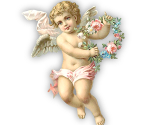 angel and png image