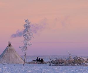 siberia, snow, and stock image