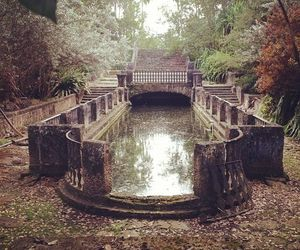 abandoned, garden, and nature image