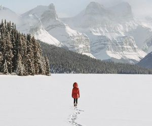 Alberta, outdoors, and travel image