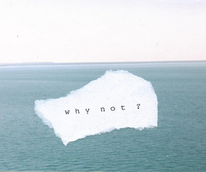 quote, why not, and sea image