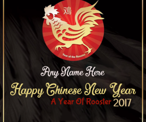 chinese, 2017, and new year image