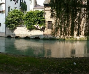 treviso and summer image