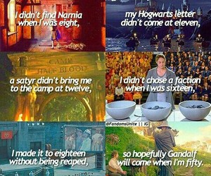 narnia, divergent, and harry potter image