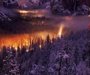 nature, purple, and winter image